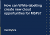 cloud MSP, Whitelabeling
