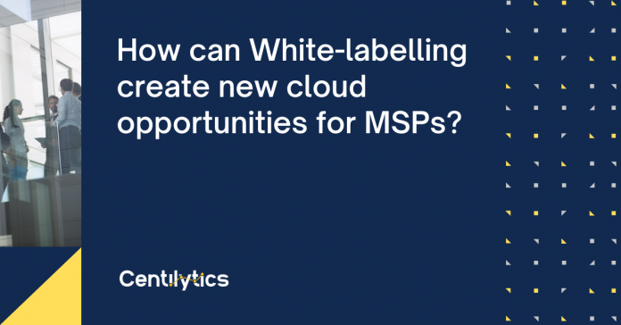 cloud MSP, Whitelabeling